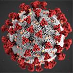 CDC illustration of coronoavirus Covid-19